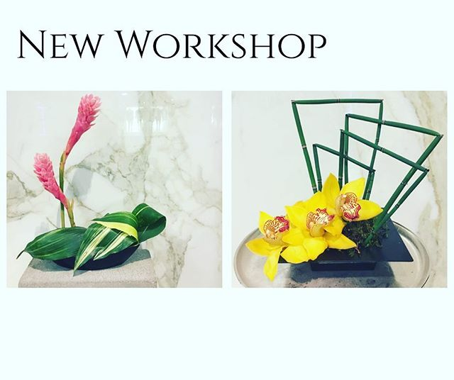•IKEBANA STYLE WORKSHOP• Sunday Jan 8th @ 1:30 pm  Learn how to make TWO of your own Japanese Style Floral arrangements. Large Variety of Florals available for your custom project.  All materials as well as Sake and Sushi are included.  Call 780-994-7673 or visit or website to book!