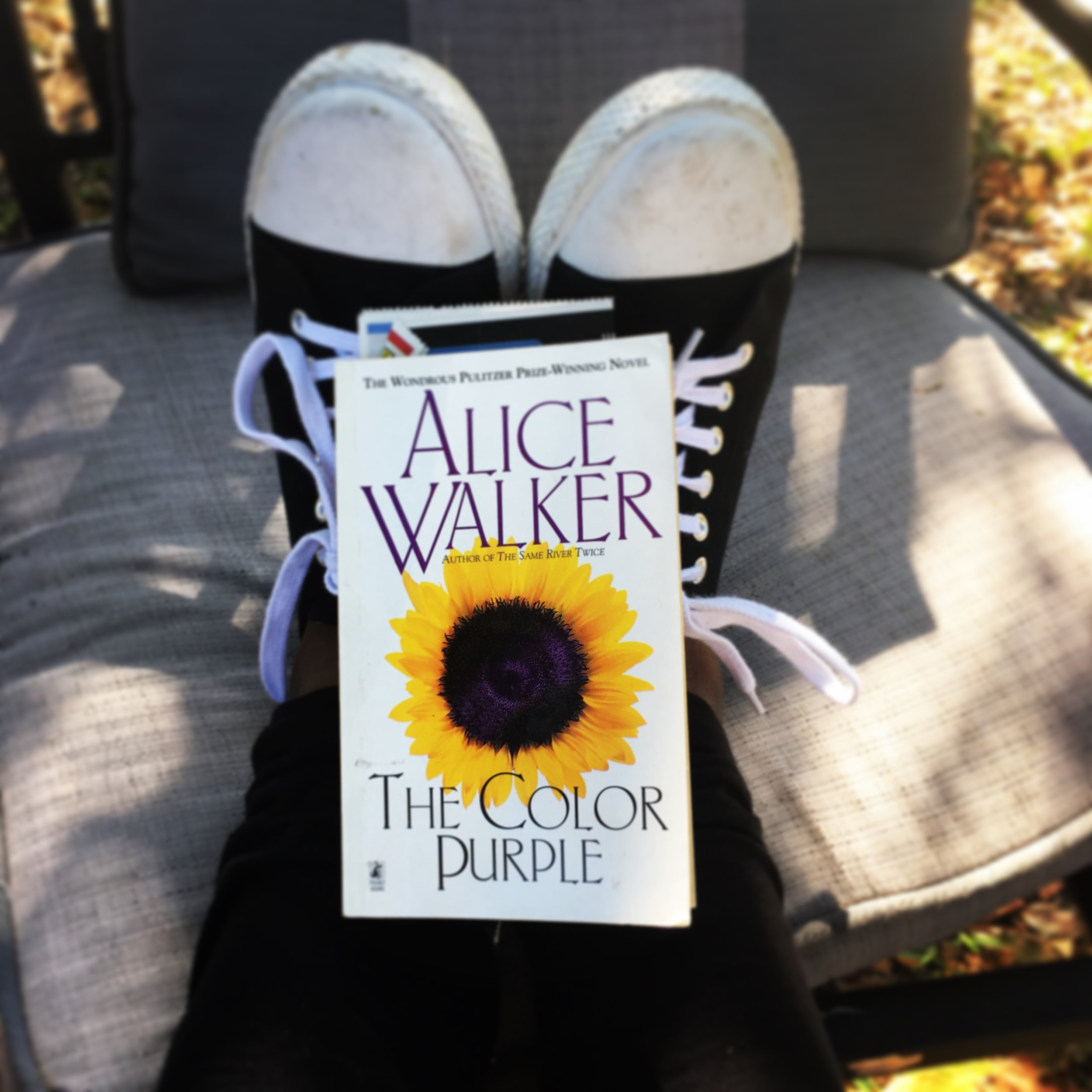 The Color Purple Book Cover Photographed by Black & Bookish