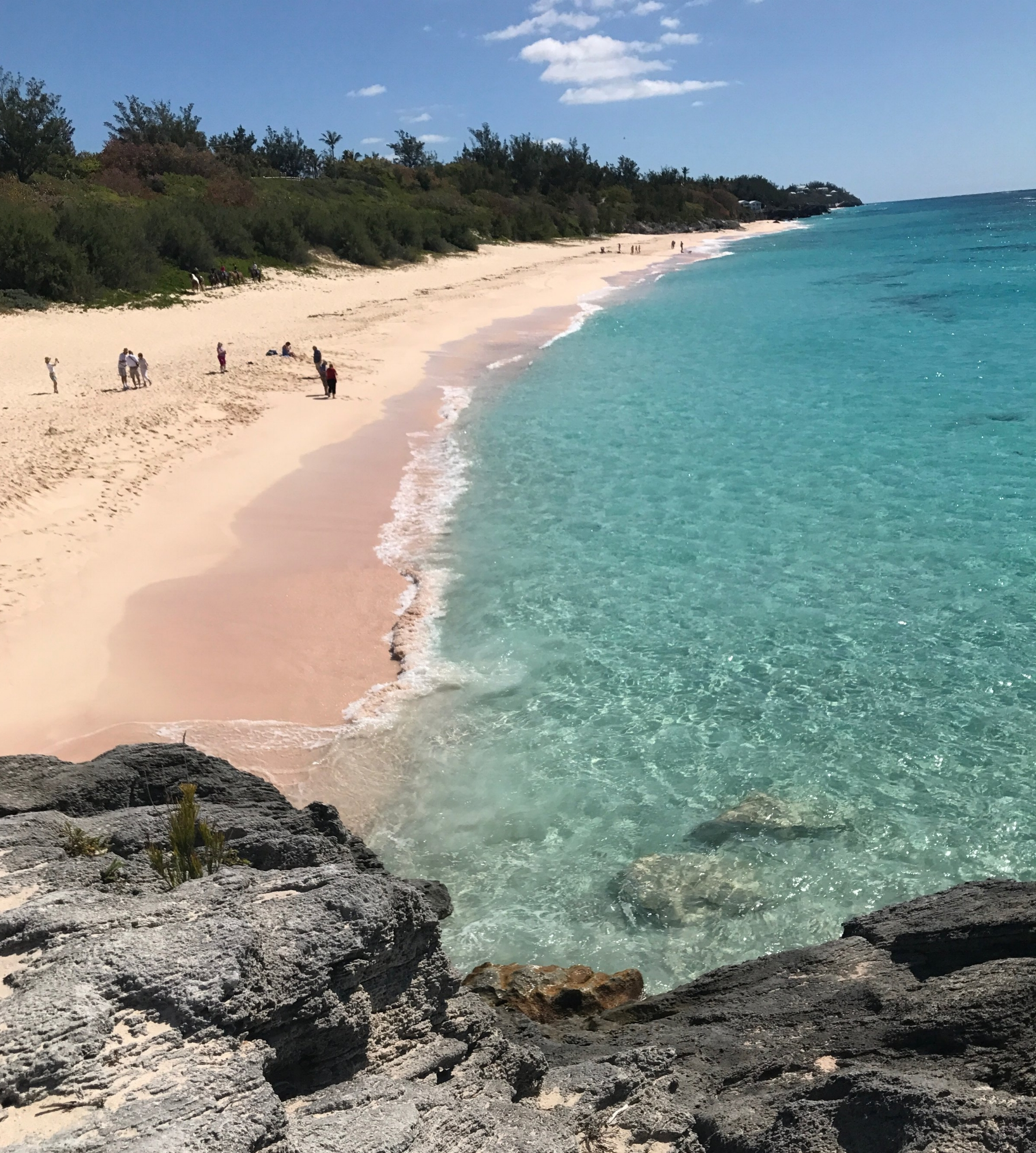 Bermuda's famous pink sand beaches - this is Warwick Long Bay