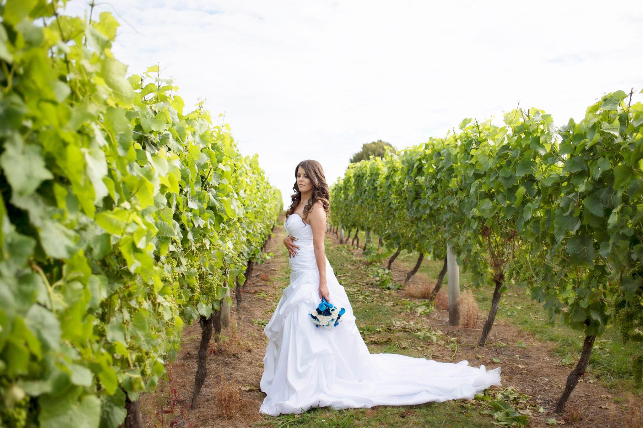 Vineyard Kim