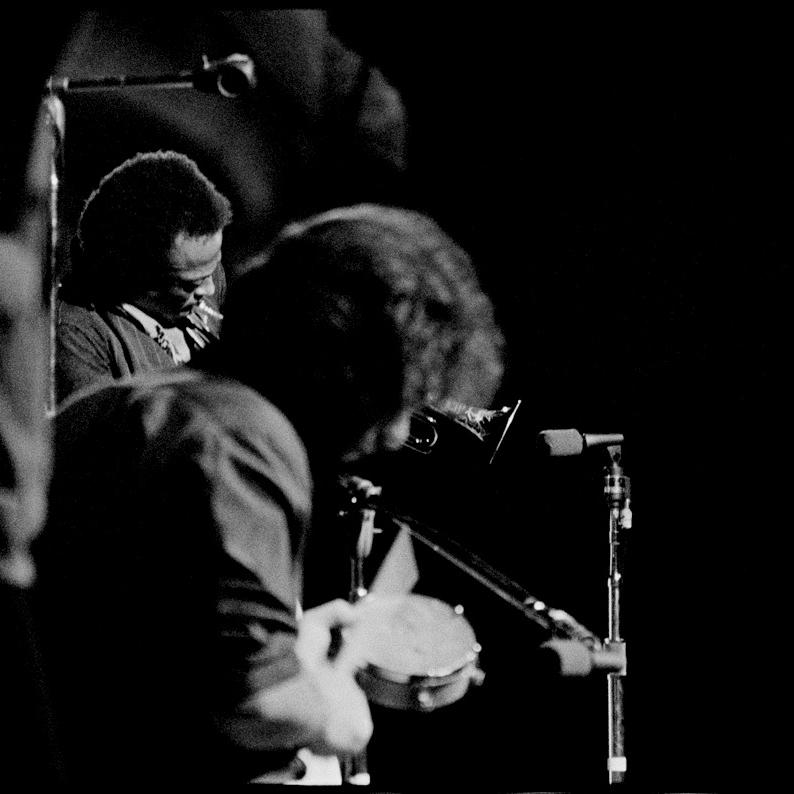 """Arthur Rosato """"Miles Davis"""""""