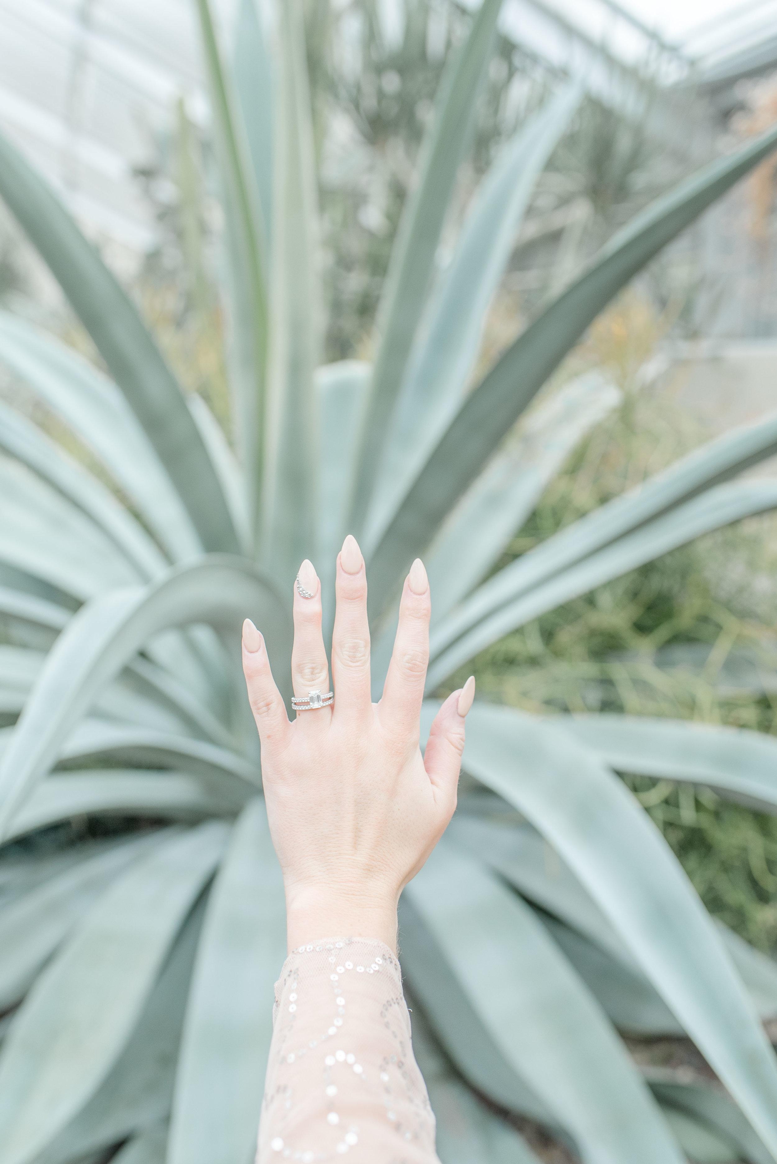 engagement photoshoot conservatory