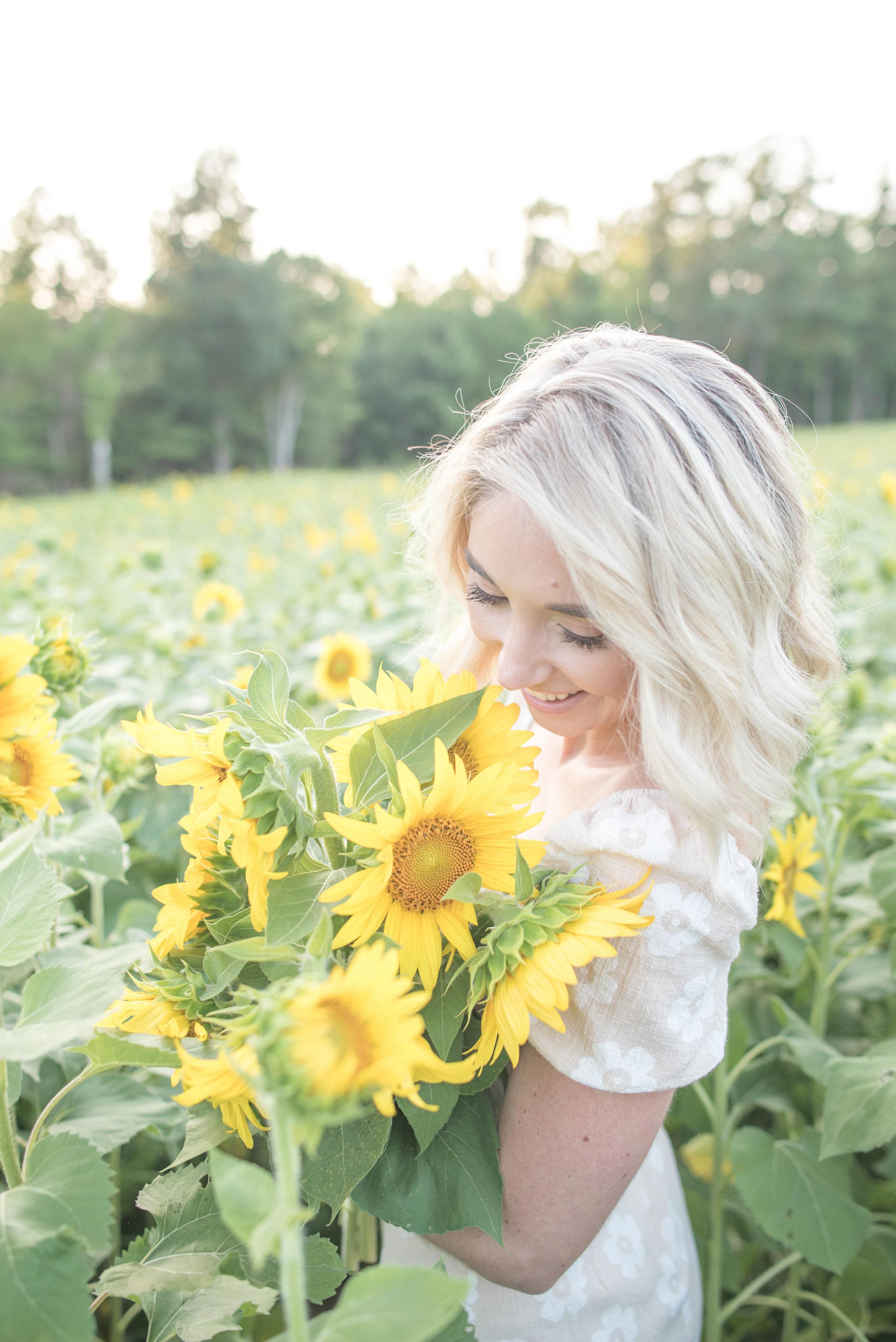 VA sunflower fields