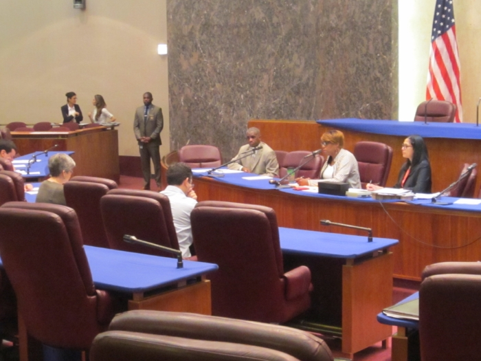 Julie Justicz testifies before the City Council Committee on Human Relations