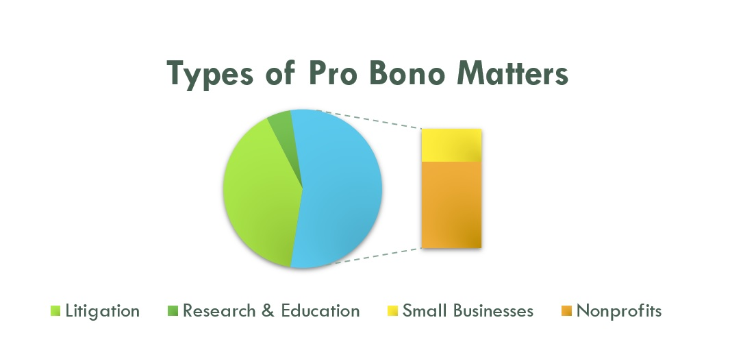 Types of Pro Bono Matters Pie Chart (002).jpg