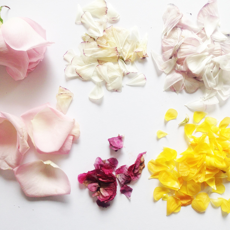 petal_confetti_step1.JPG