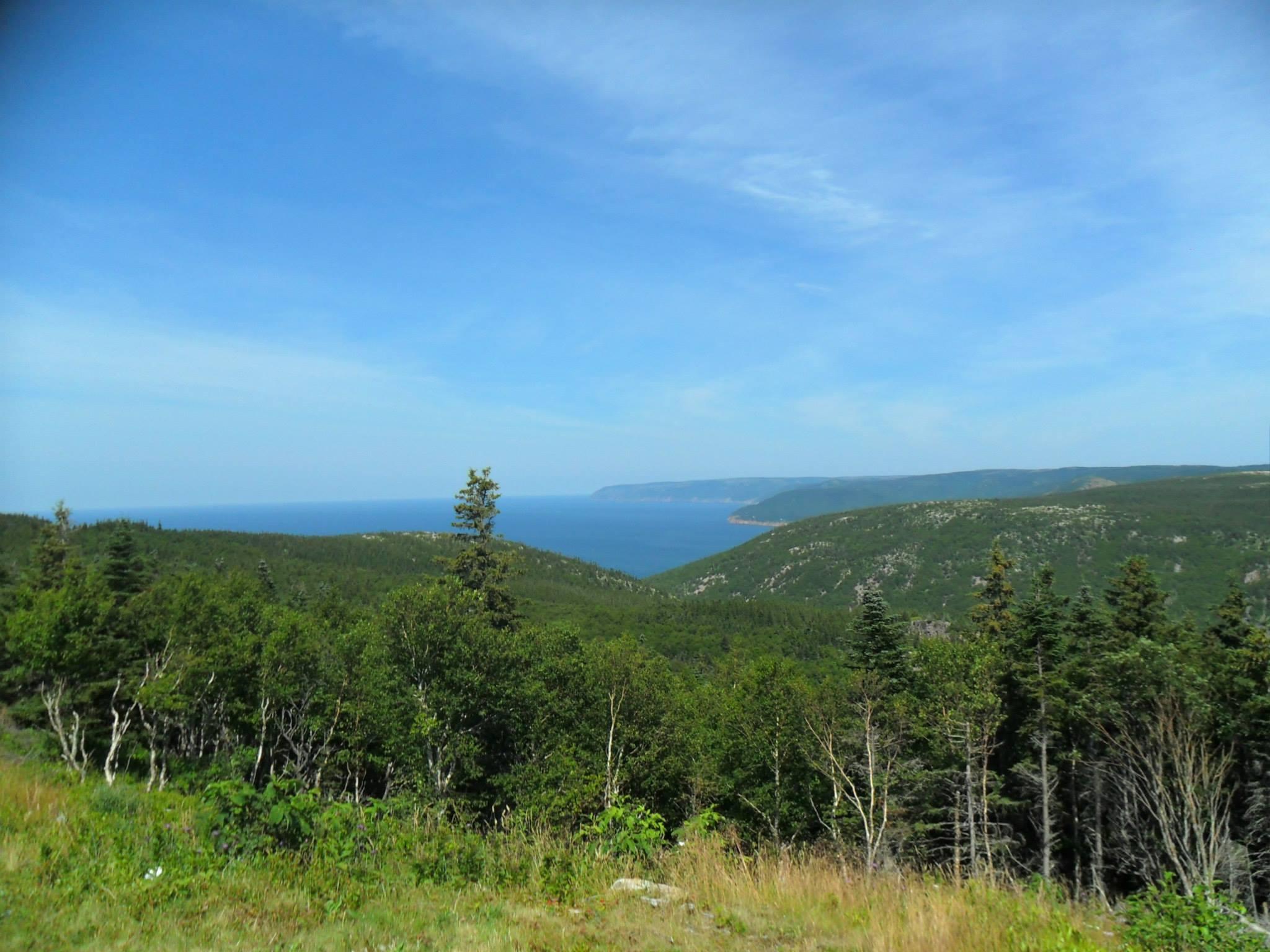 ocean-vista-cabot.jpg