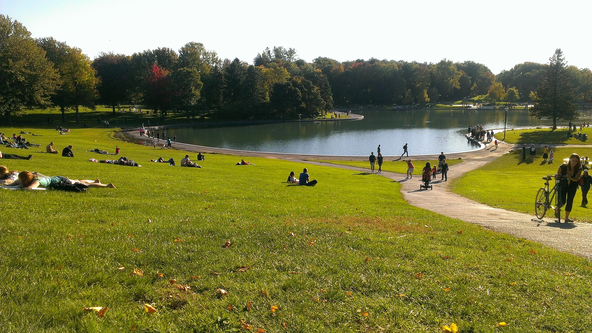 parc-du-mont-royal.jpg