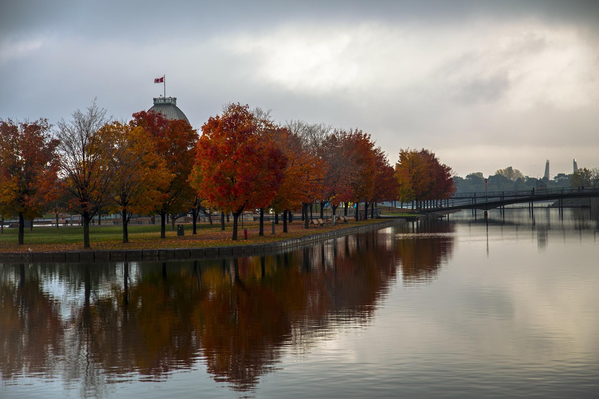 autumn-montreal.jpg