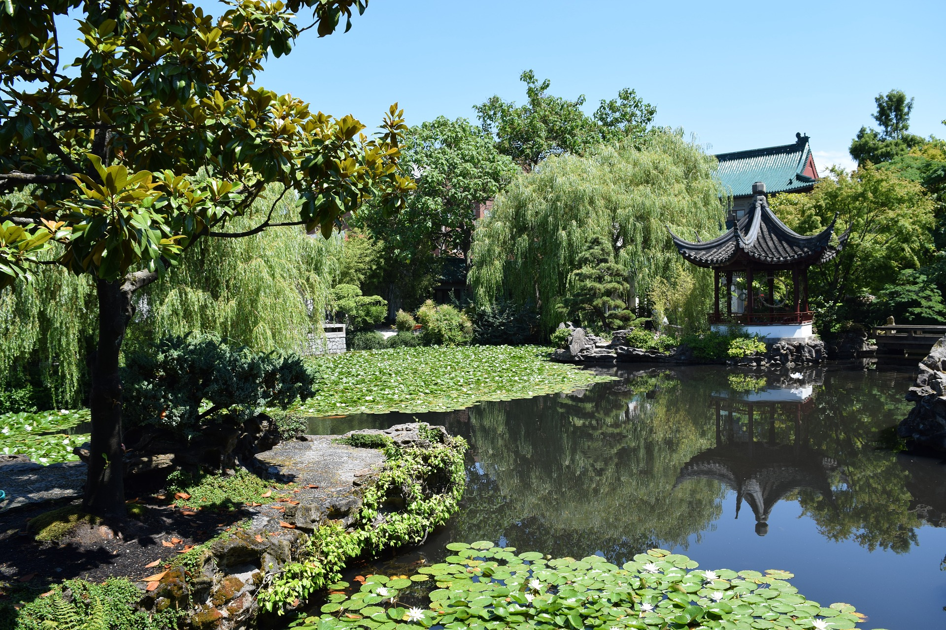 garden-dr-sun.jpg