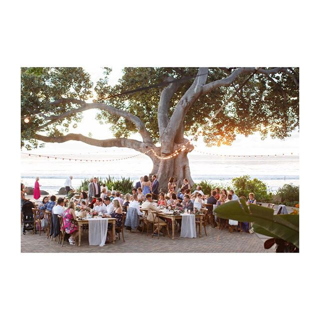 When all your favorite people come together to celebrate #wedding #hawaii @unveiledhawaii