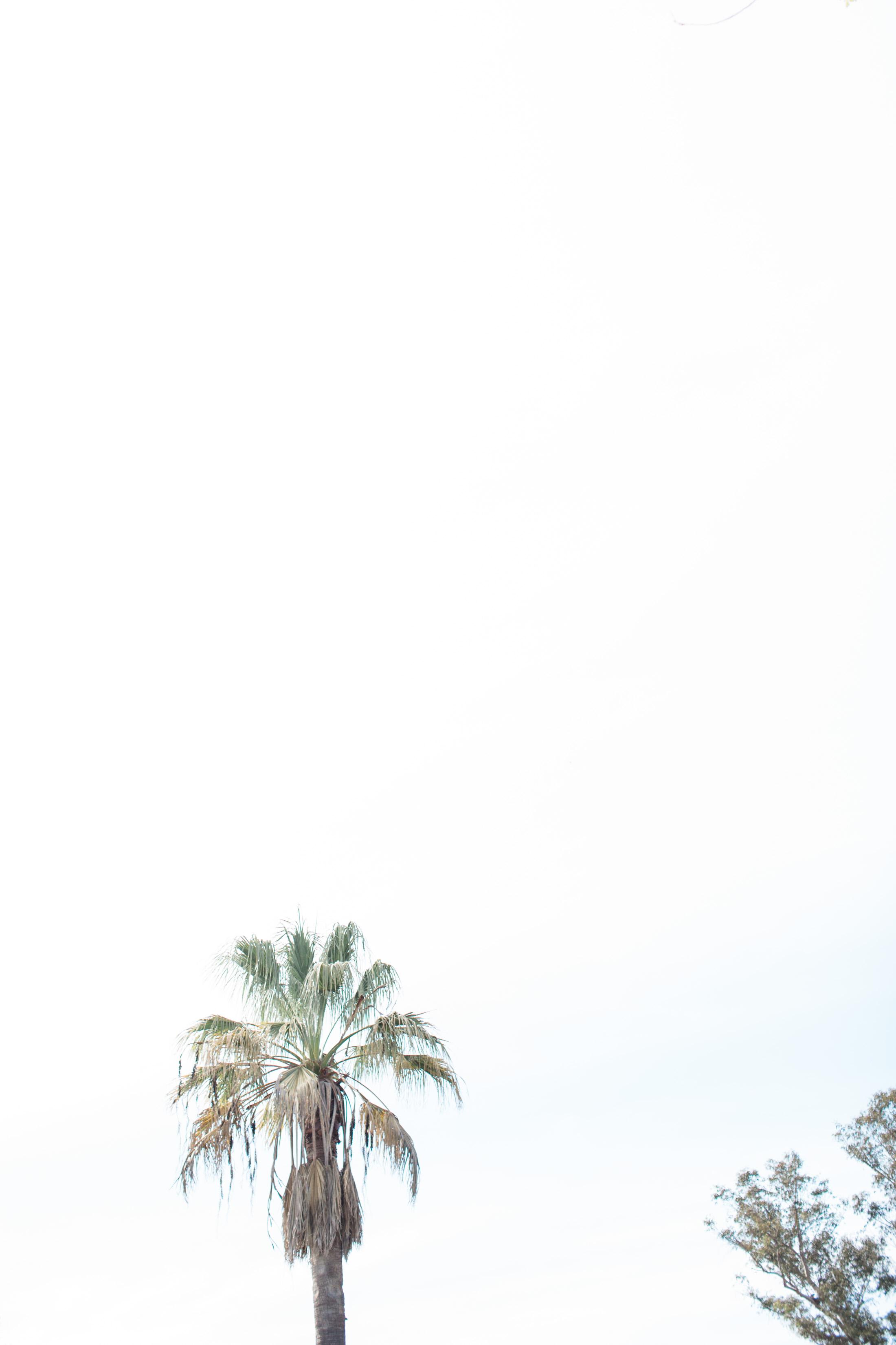 Cira&Max_Farmstead-39.jpg