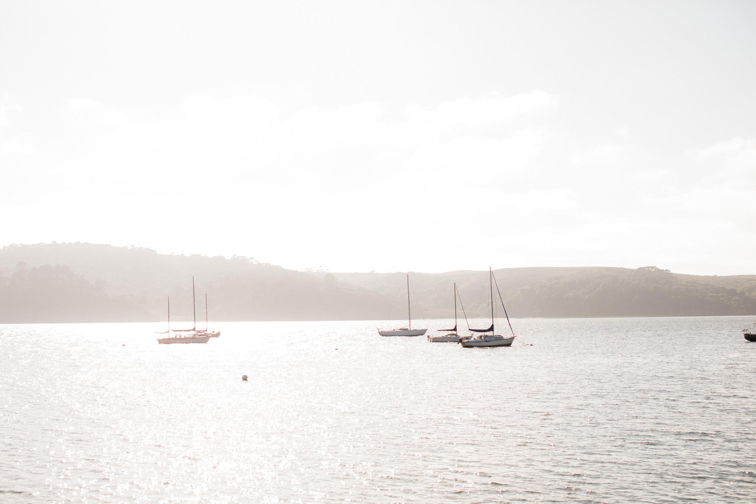 Bodega Bay Weekend-20.jpg
