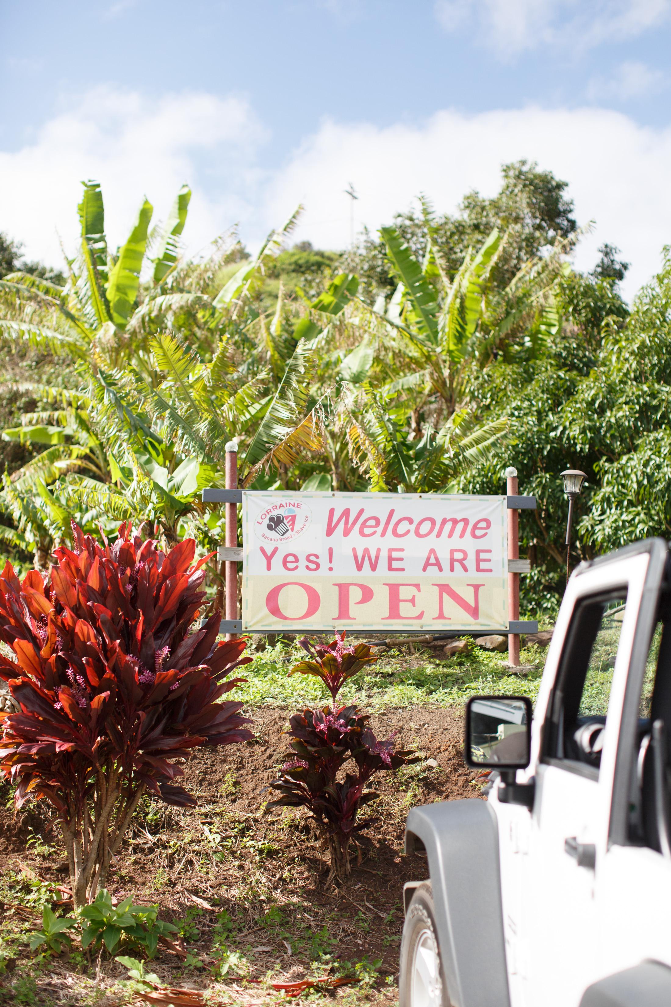 MauiHawaii2017-12.jpg