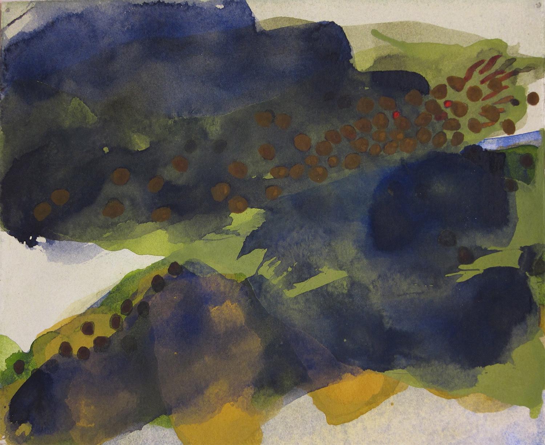 Salvelinus fontinalis-ultramarine (2016)