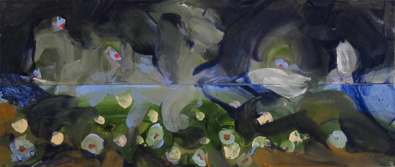 Trout study (2010)