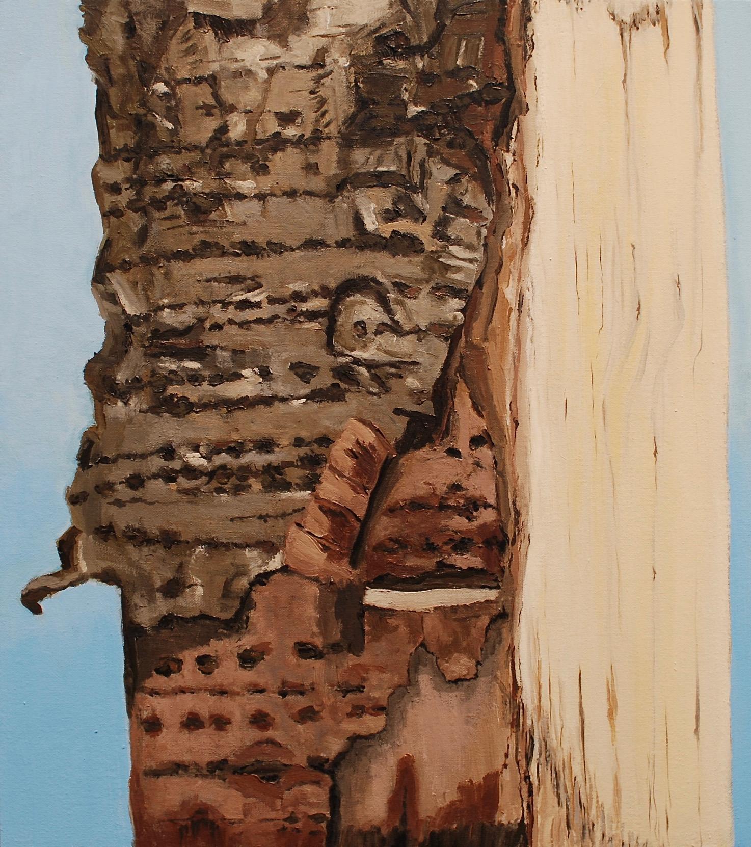 Split Birch (2018)