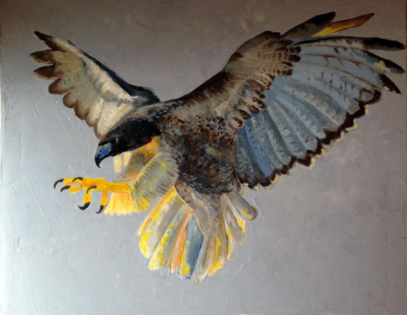 Bird of Prey 1