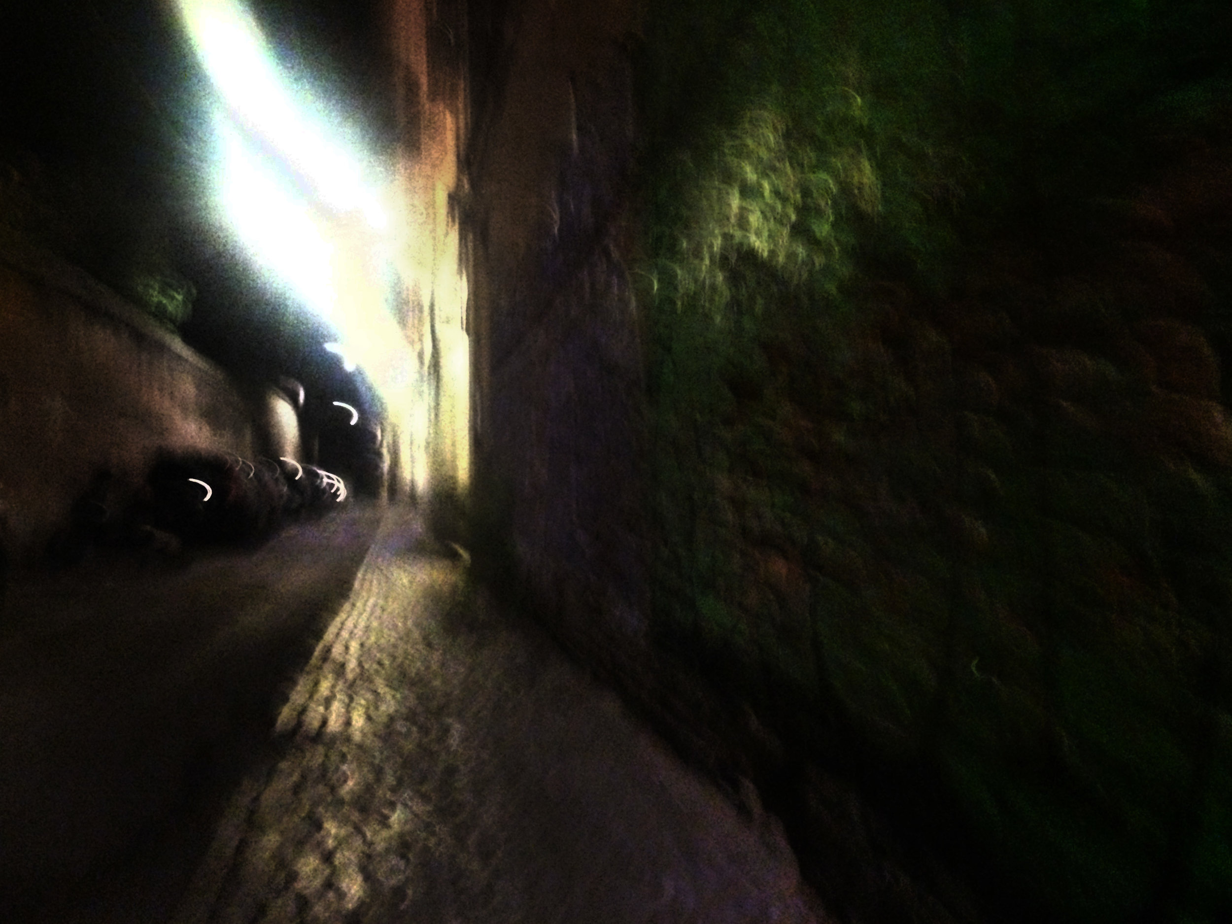 Walking at Night_A un attento esame il muschio si rivela pittura.jpg
