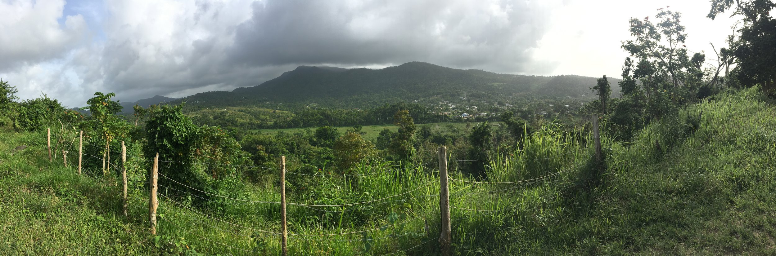 Stop 1: Looking south toward the Sierra Luquillo Mountains and El Yunque National Forest