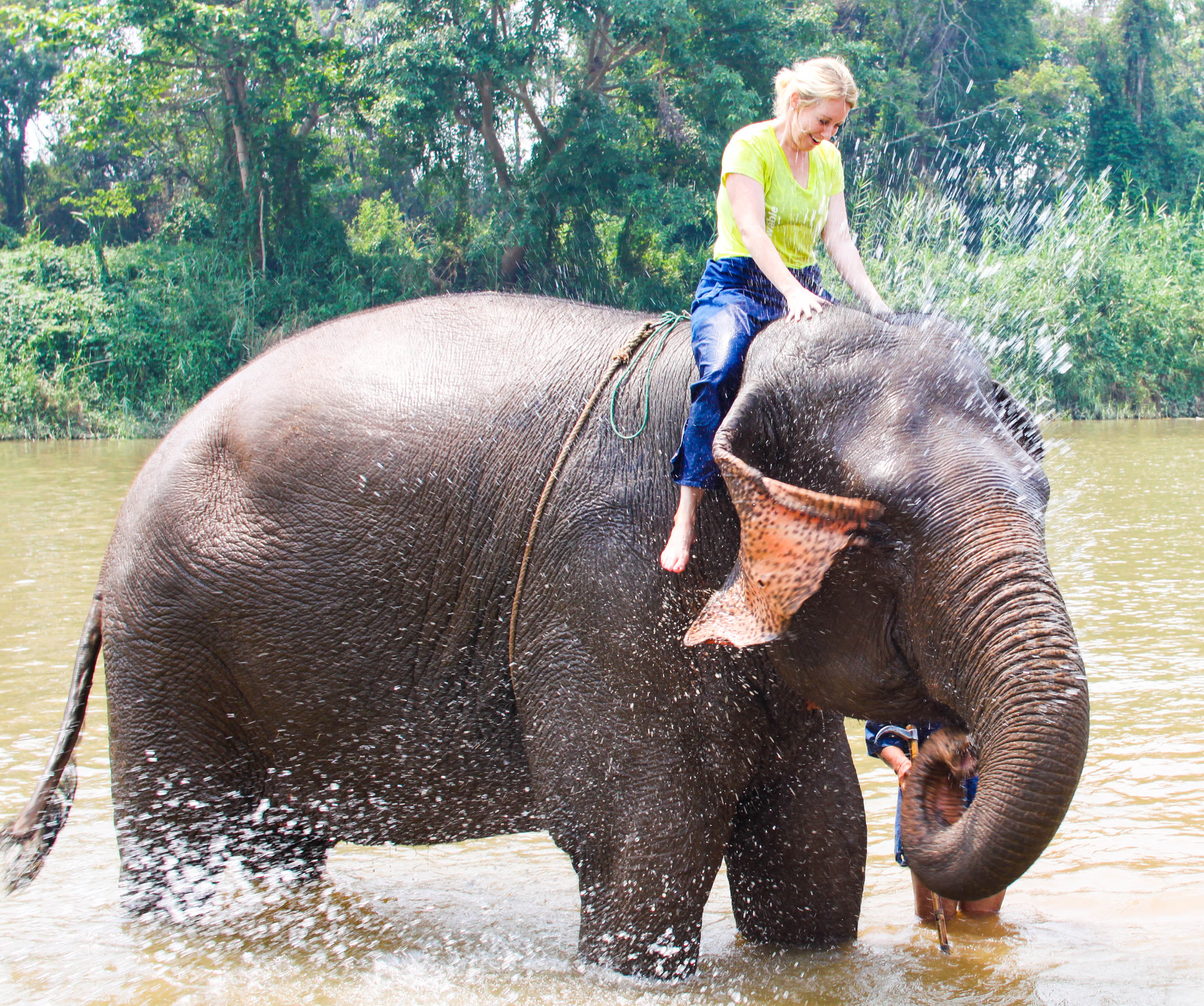 A true once-in-a-lifetime experience: mahout training at the Anantara Golden Triangle