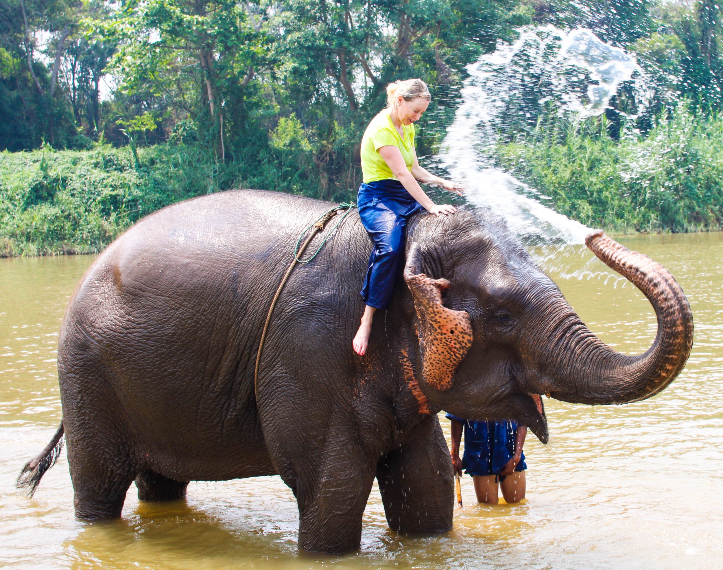 Another elephant picture because I had to show you what great aim this gentle giant had . . .