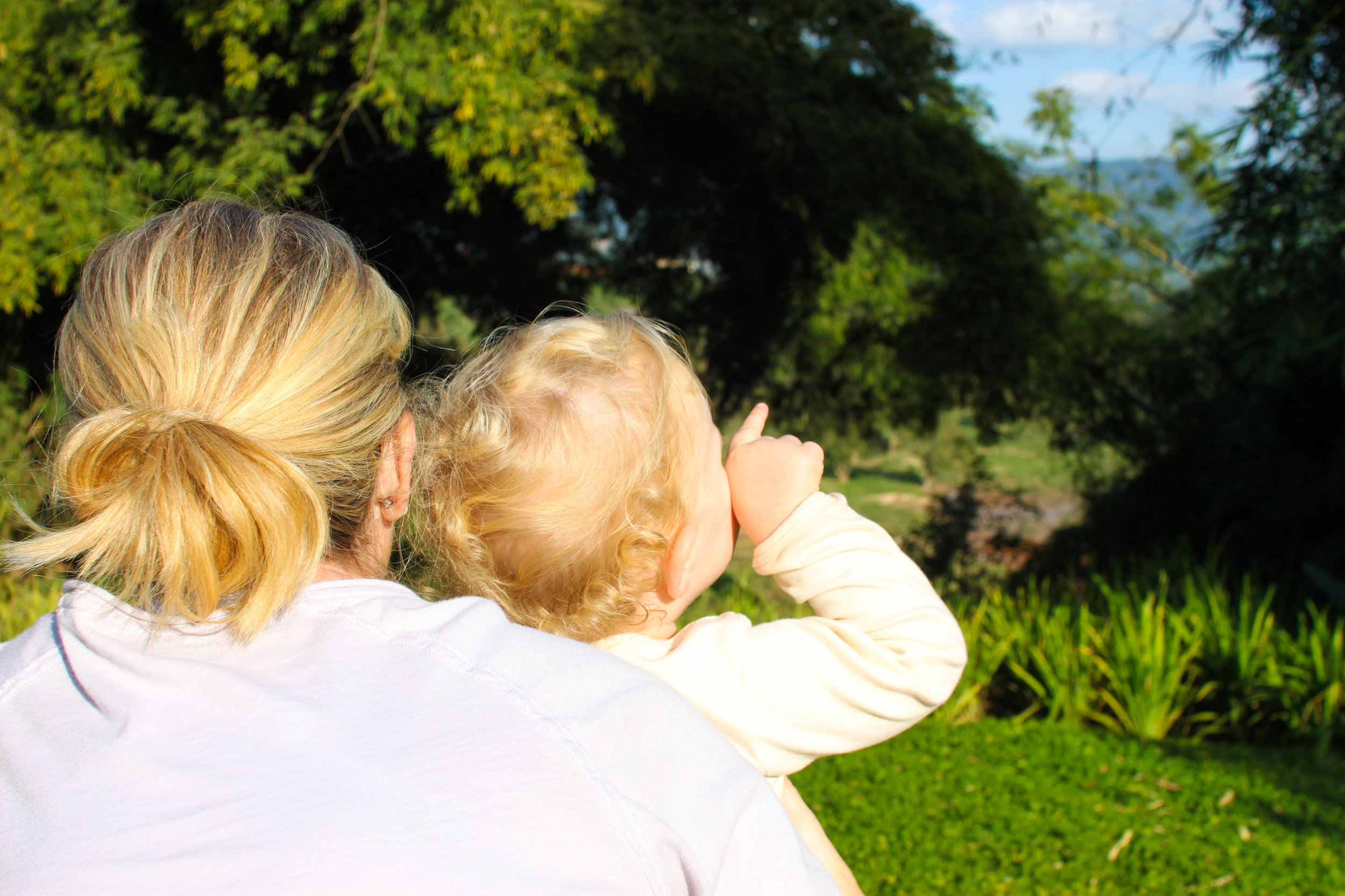 Spotting elephants in the distance at the Anantara Golden Triangle