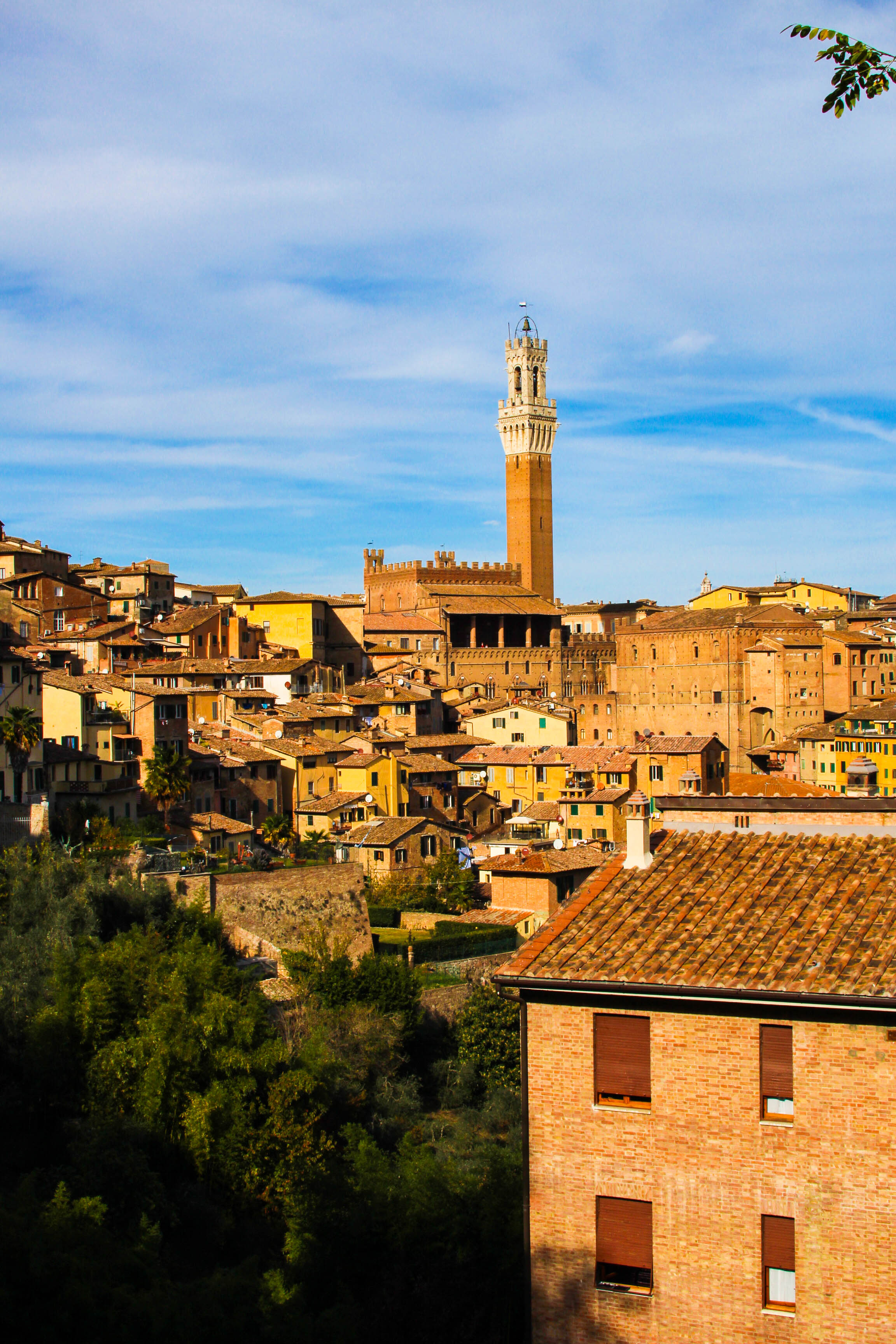 Beautiful Siena, as seen from the lot where we parked (!)