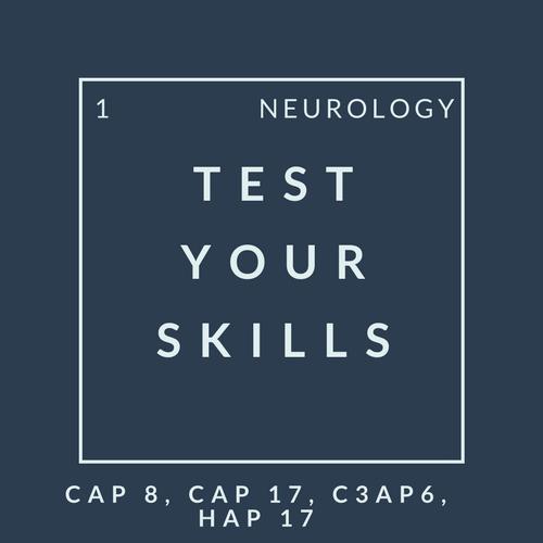 Neuro Quiz 1