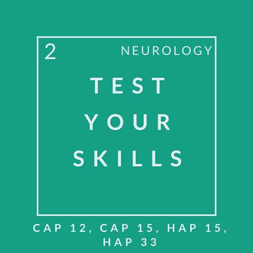 Neuro Quiz 2