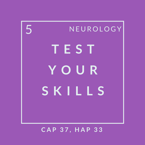 Neuro Quiz 5