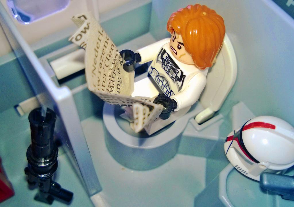 Toilet Lego