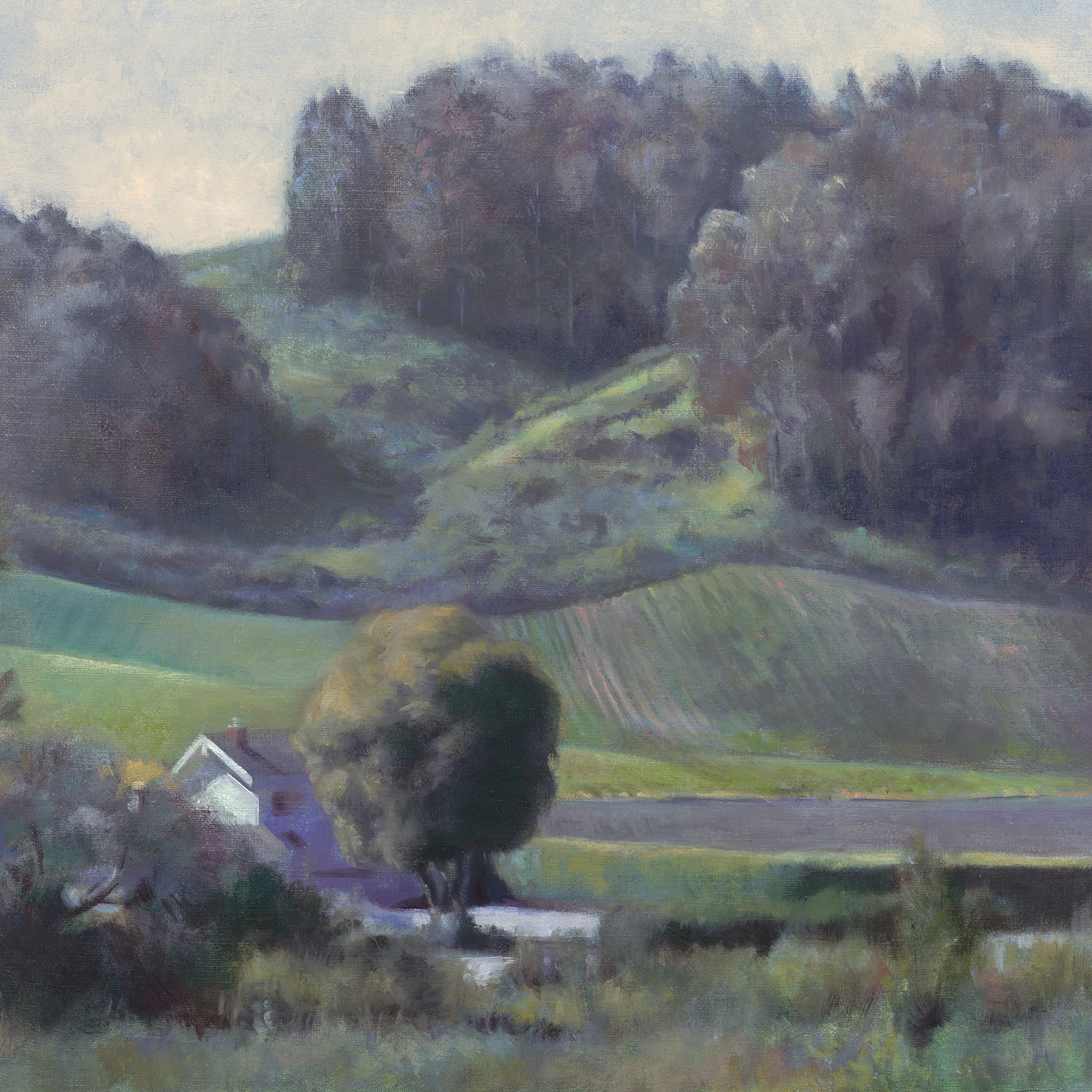 """Morning Haze , 16x20"""" oil on linen, Collection of the LaFollette Family"""