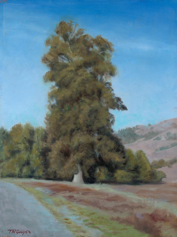 """ Roadside San Juan Batista ""   12x9"" oil on linen  over wood panel"