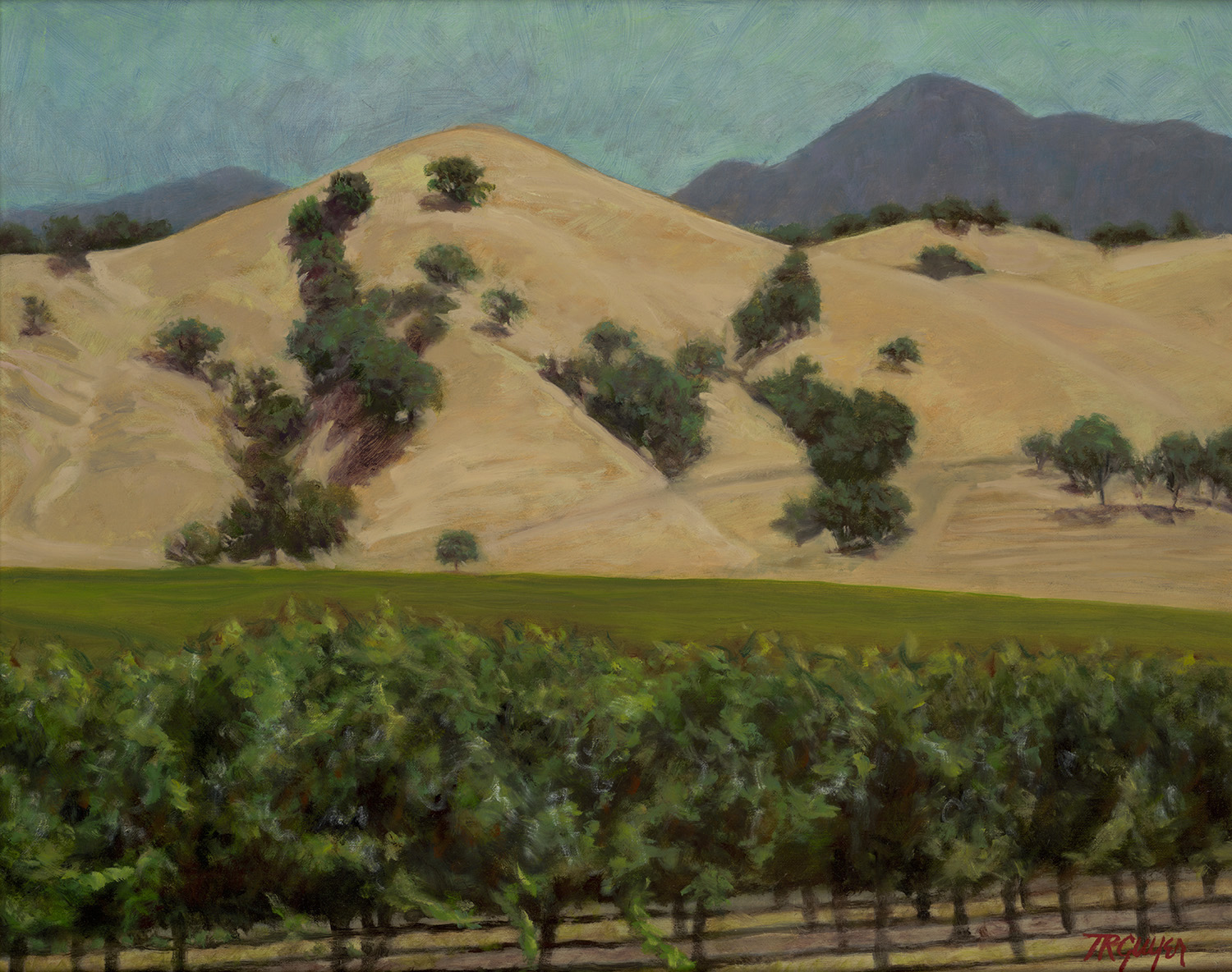 """""""Wine Country"""" 16x20"""" oil on linen"""