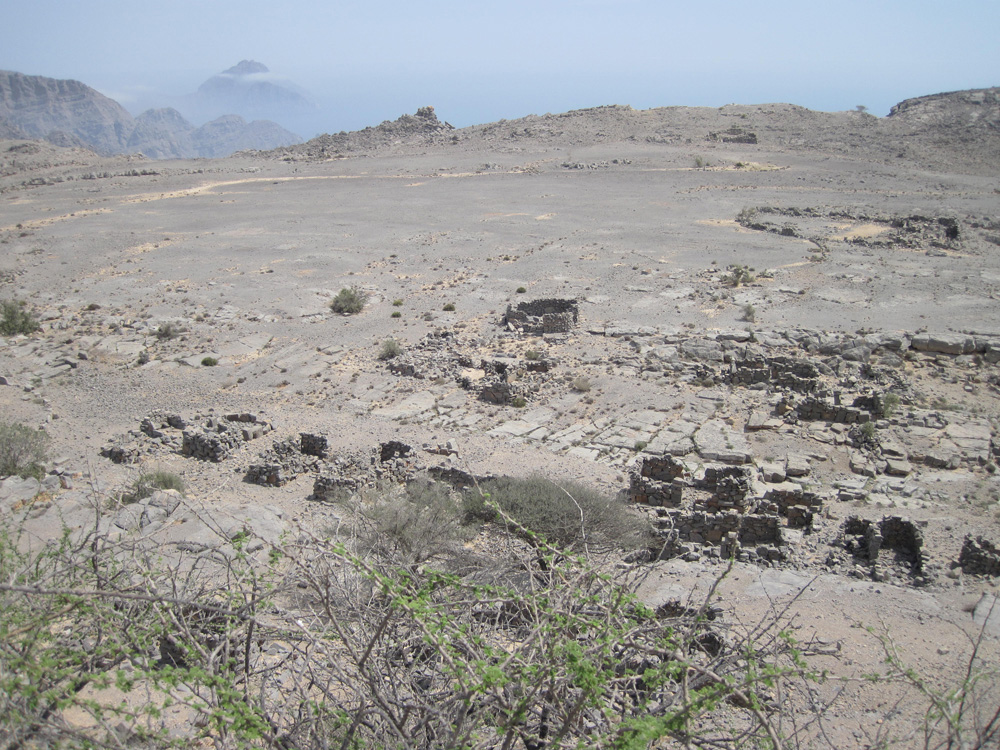 oman1_J_upper_field_1.jpg