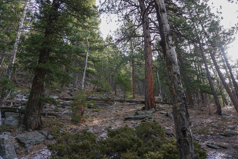Brenda-Sarai-Zuniga-Blogger-Mindfulness-Colorado-Trip-Brenda-Zuniga-Brenda-Sarai-Meditation-42.jpg