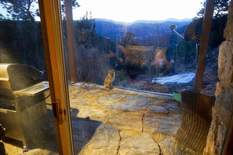 Brenda-Sarai-Zuniga-Blogger-Mindfulness-Colorado-Trip-Brenda-Zuniga-Brenda-Sarai-Meditation-38.jpg