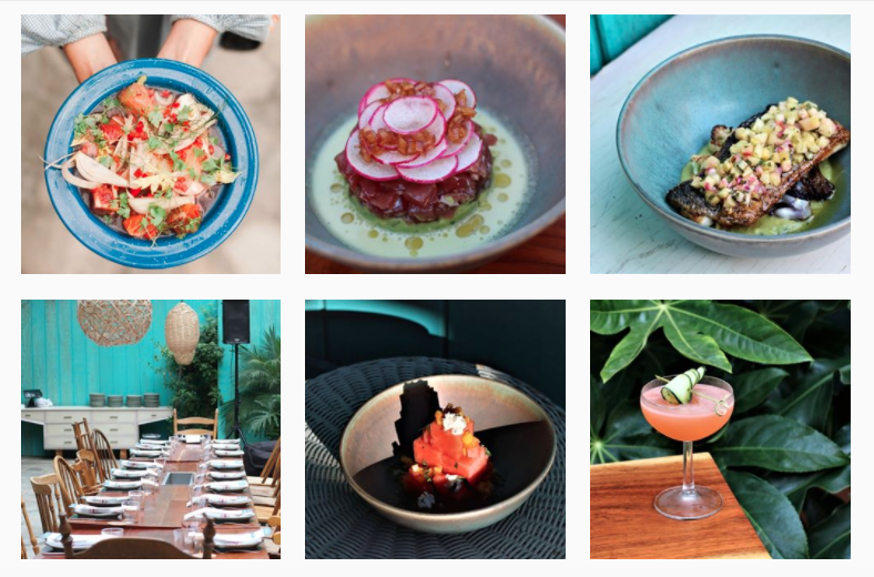 1. Tintorera  Enjoy a menu filled with Modern Mexican dishes in this vibrant and instagrammable oasis. The leafy greens and bright teal backdrop makes for a great instagram post.