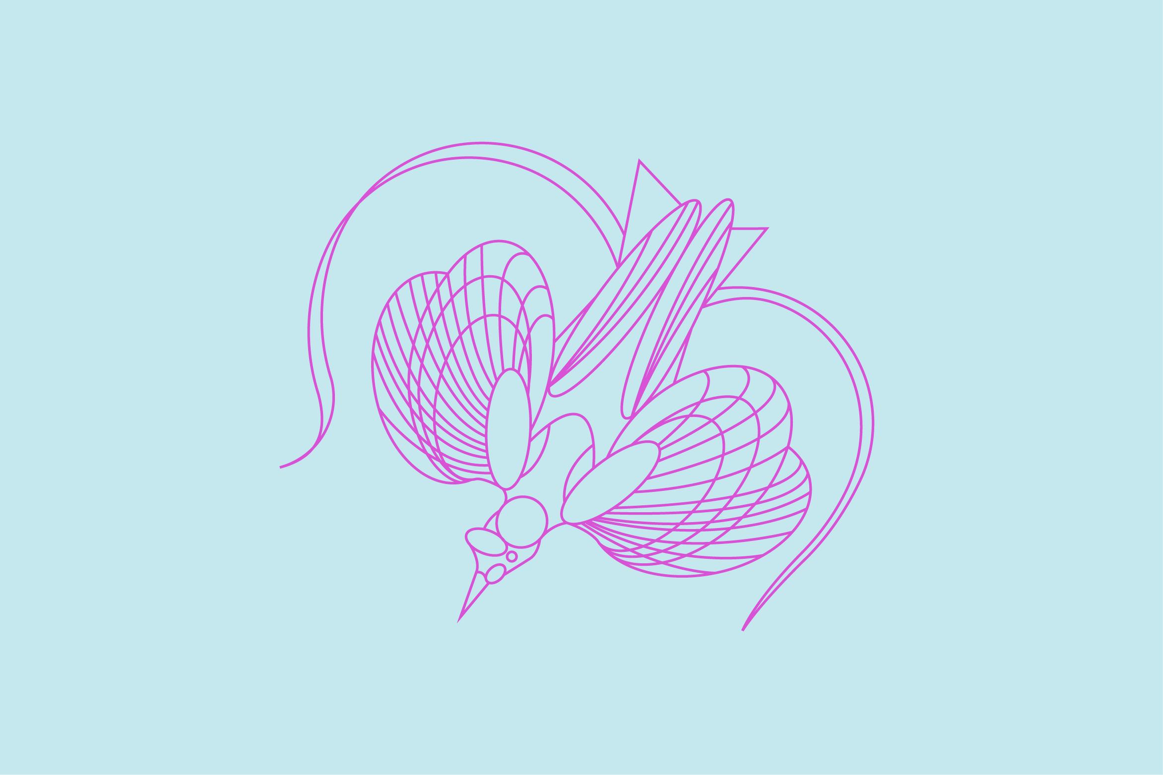 Birds-All3.jpg