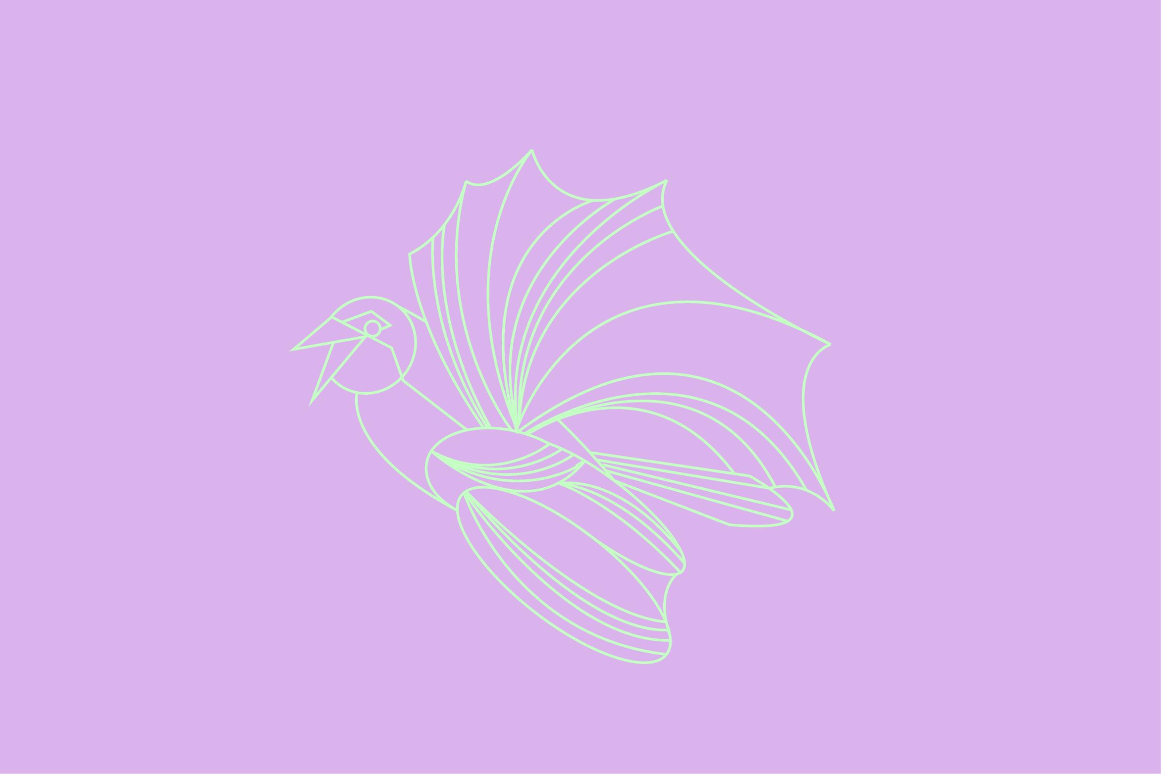 Birds-All4.jpg