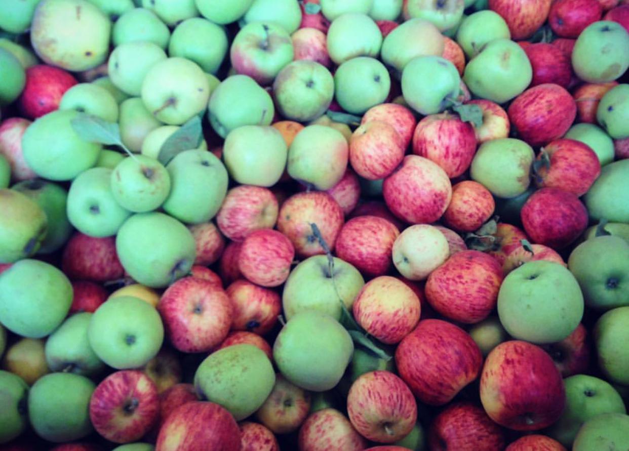 AppleBlend.jpg