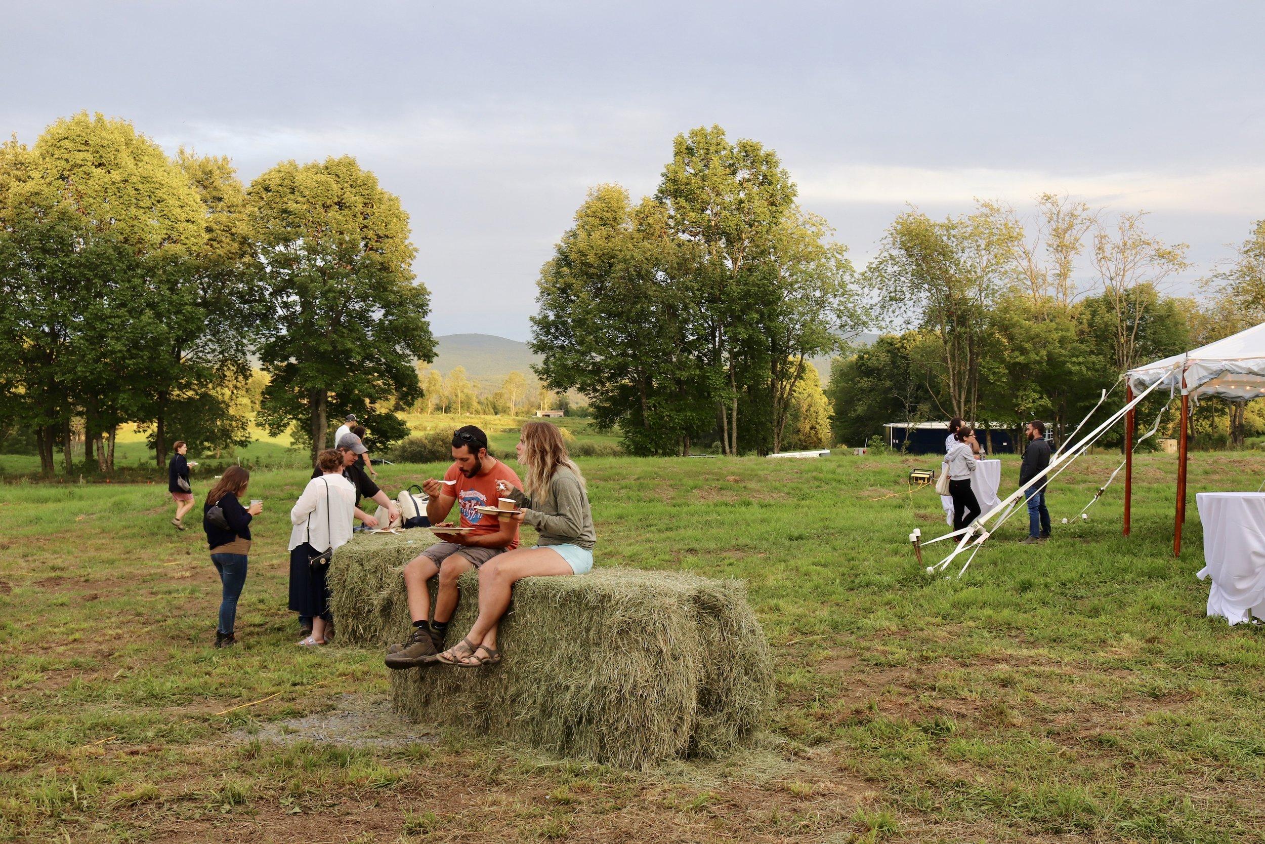 jasper hill farm view