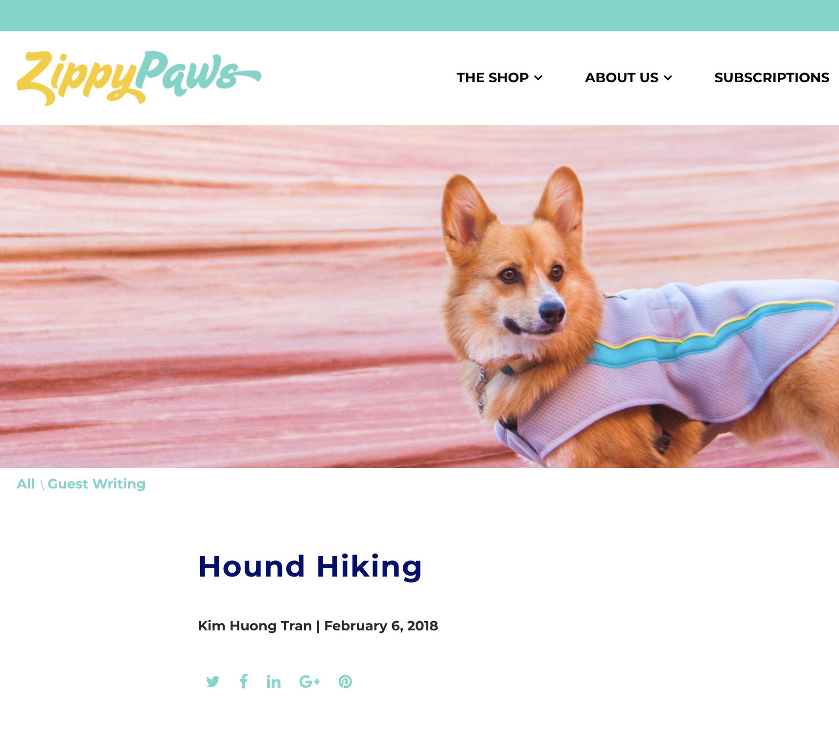 Zippy Paws:  Hound Hiking
