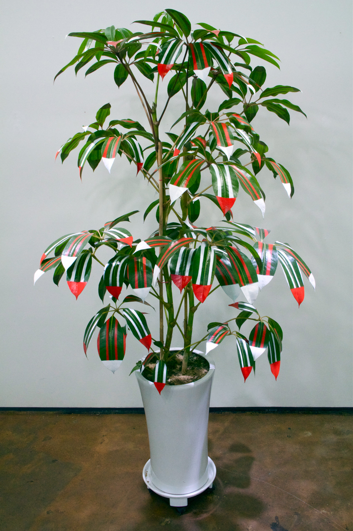 Untitled , Dimensions Variable, Lacquer on Plant, 2014
