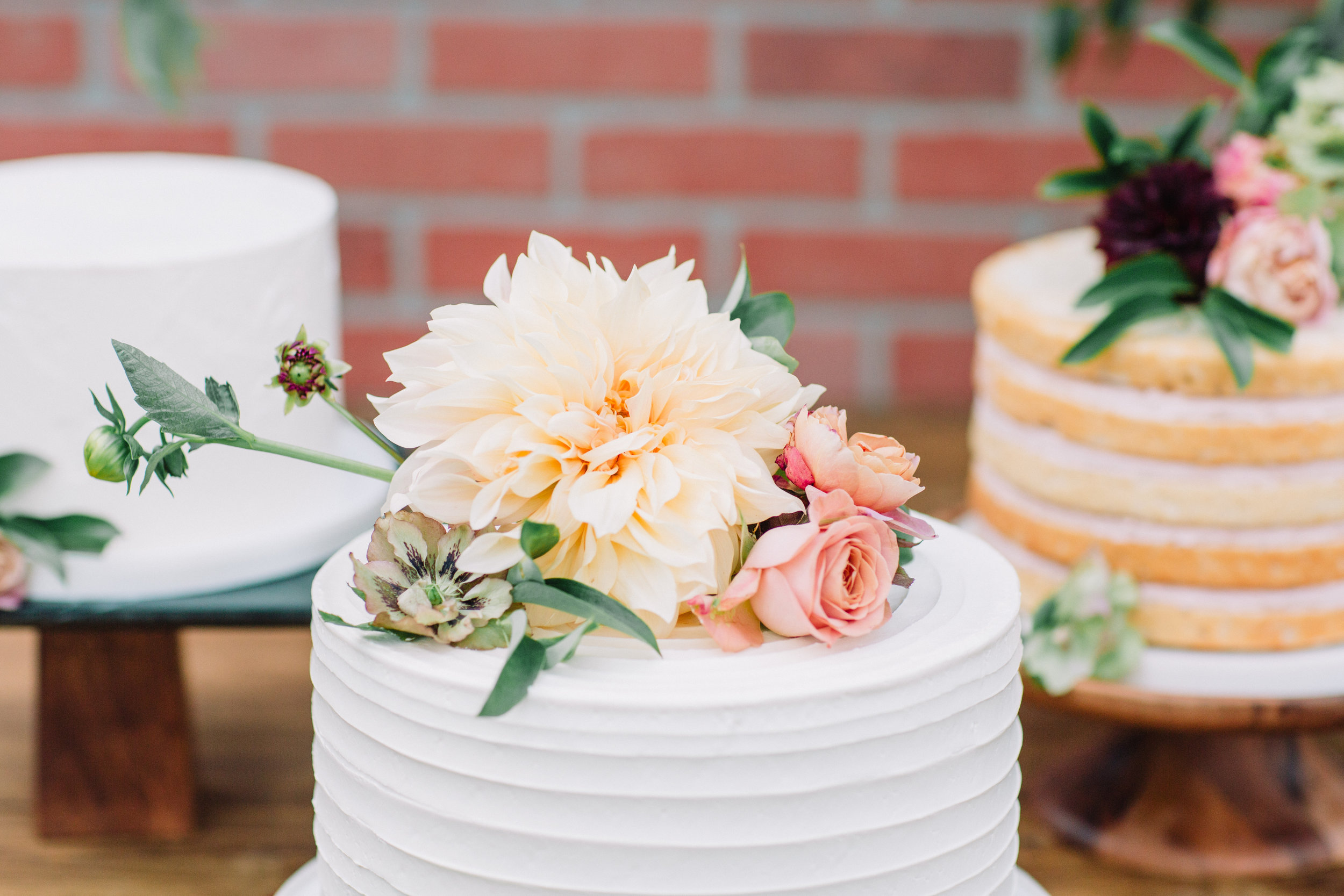The Potted Pansy cake floral