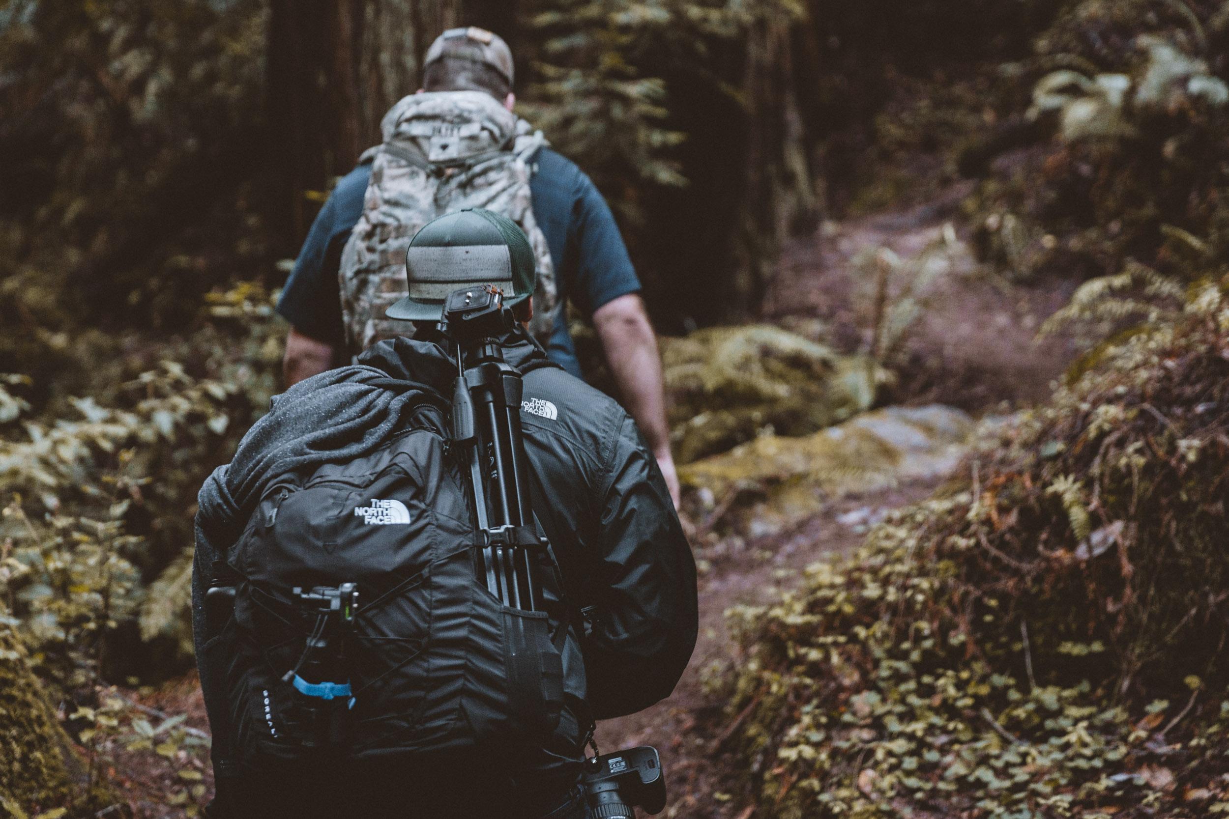 big-basin-trail-hike-and-shoot-1.jpg