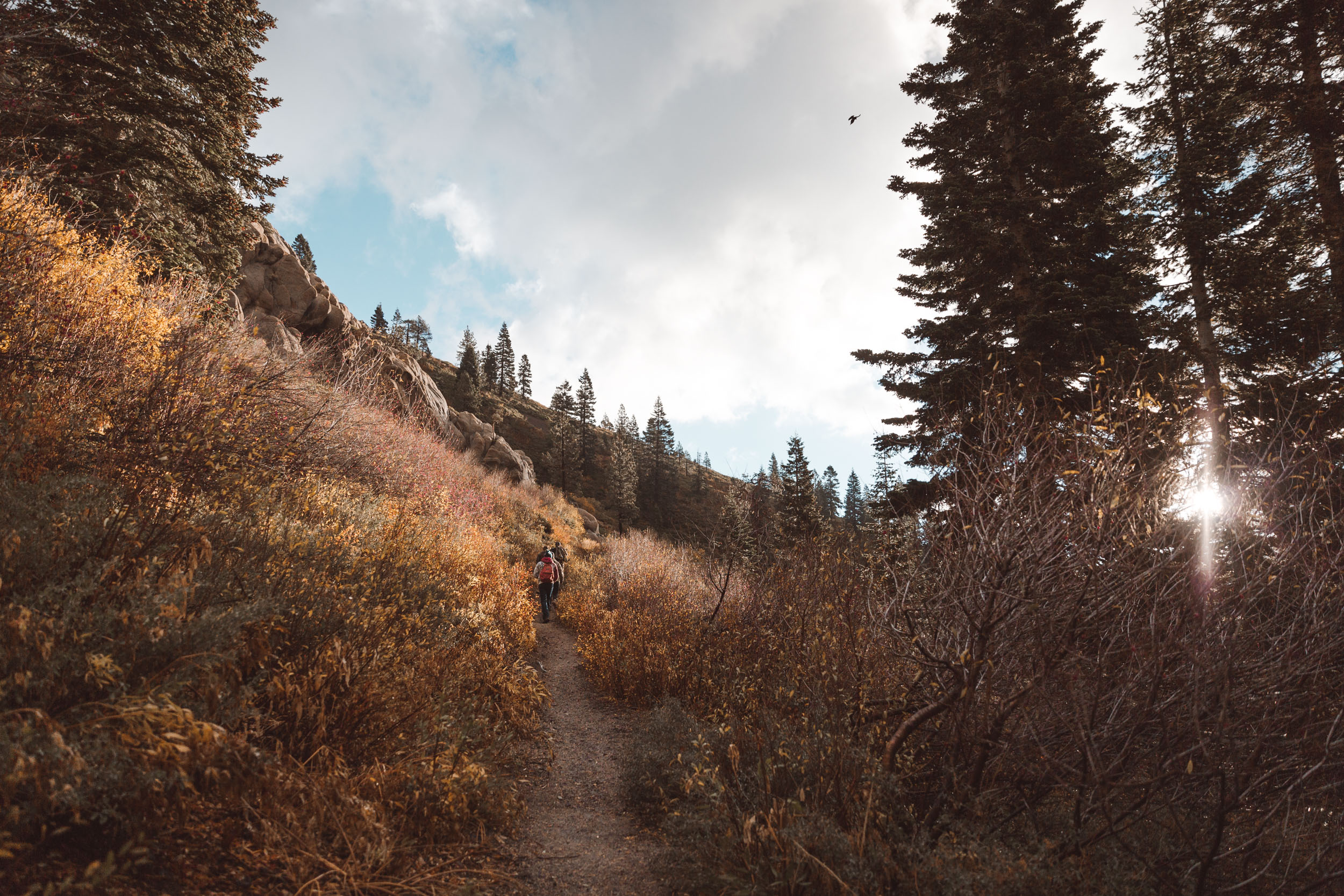 five-lakes-trail-hike-and-shoot-1.jpg