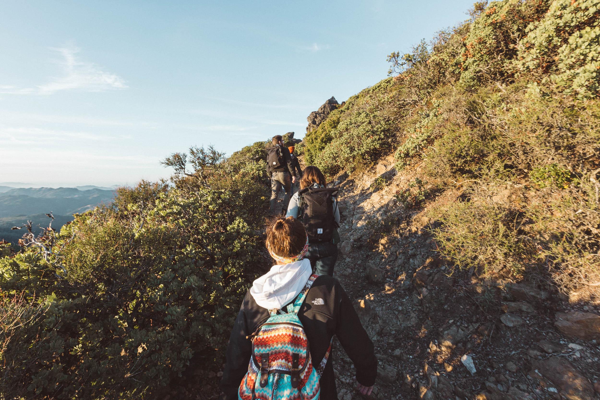 mount-tamalpais-east-peak-trail-hike-and-shoot-1.jpg