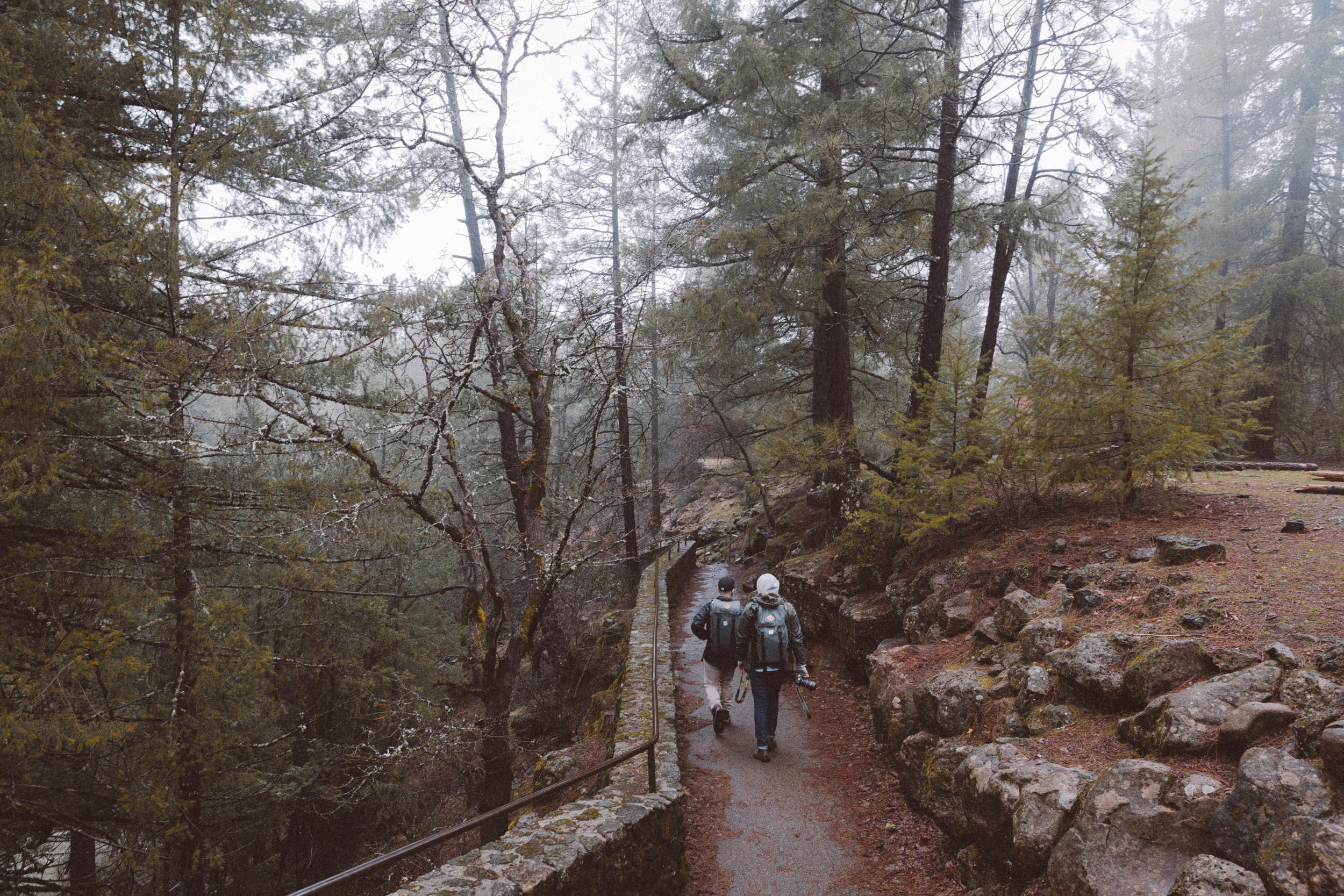 shasta-adventure-burney-falls-trail-hike-and-shoot-1.jpg